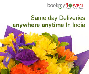 offers on Gifts & Flowers